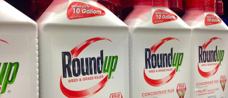 Evidence Linking Chemicals And Learning >> Roundup Weed Killer Cancer What S The Risk